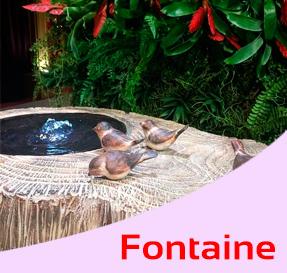 Coleçao Fontaine