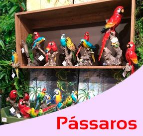 Coleção Pássaros